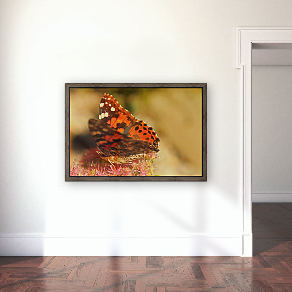 Un Papillon with Floating Frame