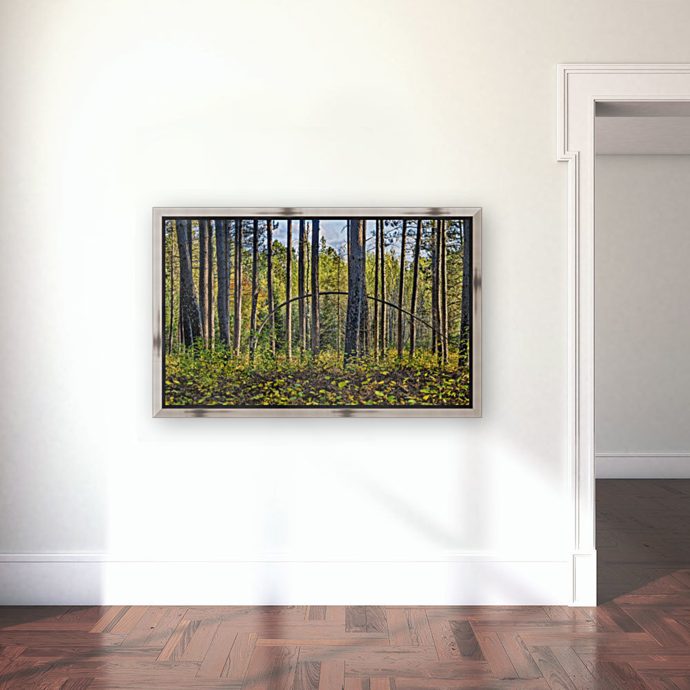Stand of Trees  Art