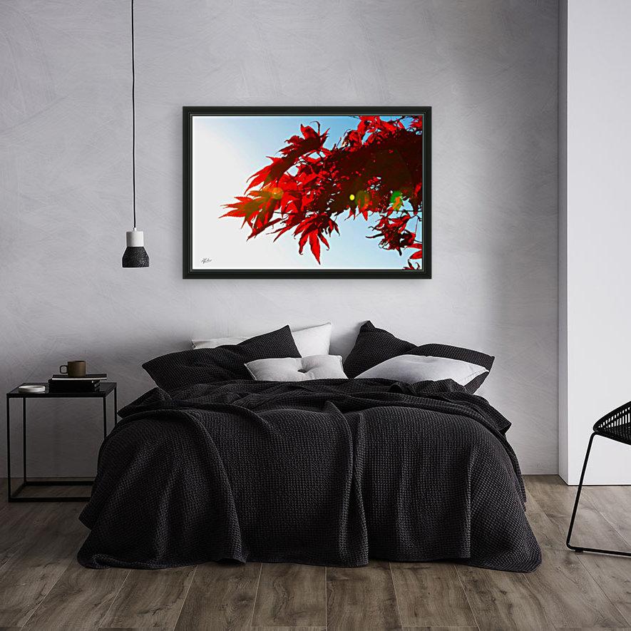 Chinese Maple  Art