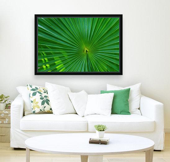 Palm tree detail  Art