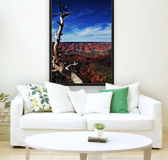 Grand Canyon framed by tree with Floating Frame