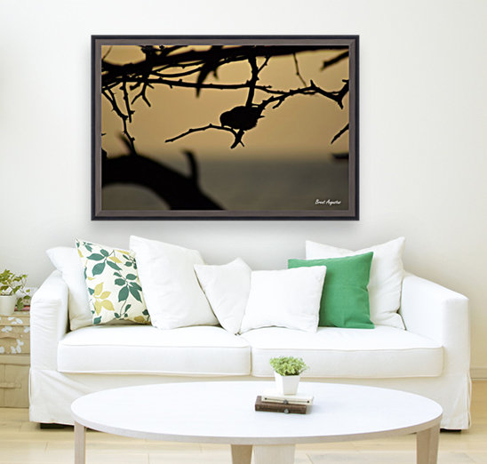 Branch with Floating Frame