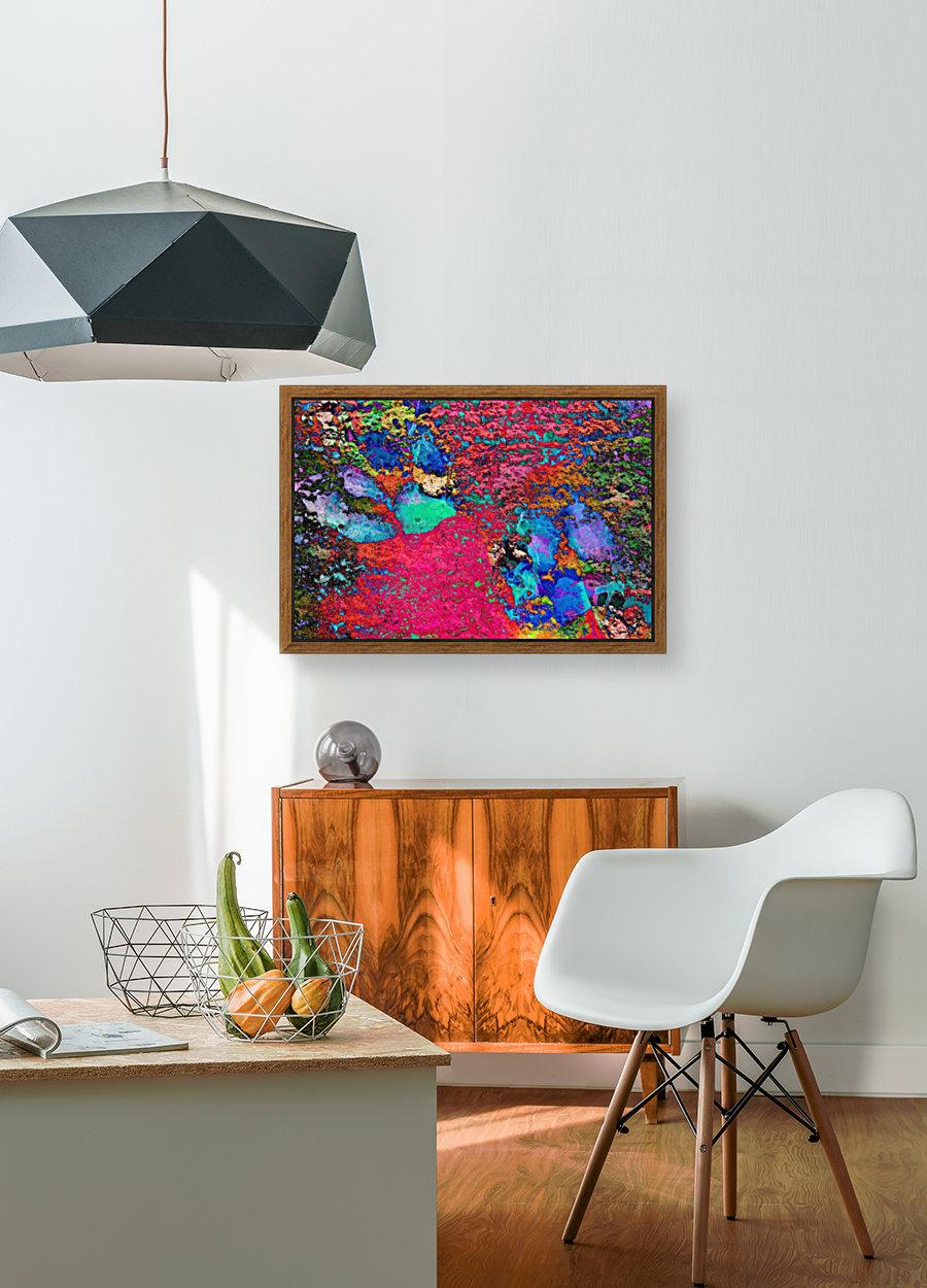 Paw Prints Colour Explosion  Art