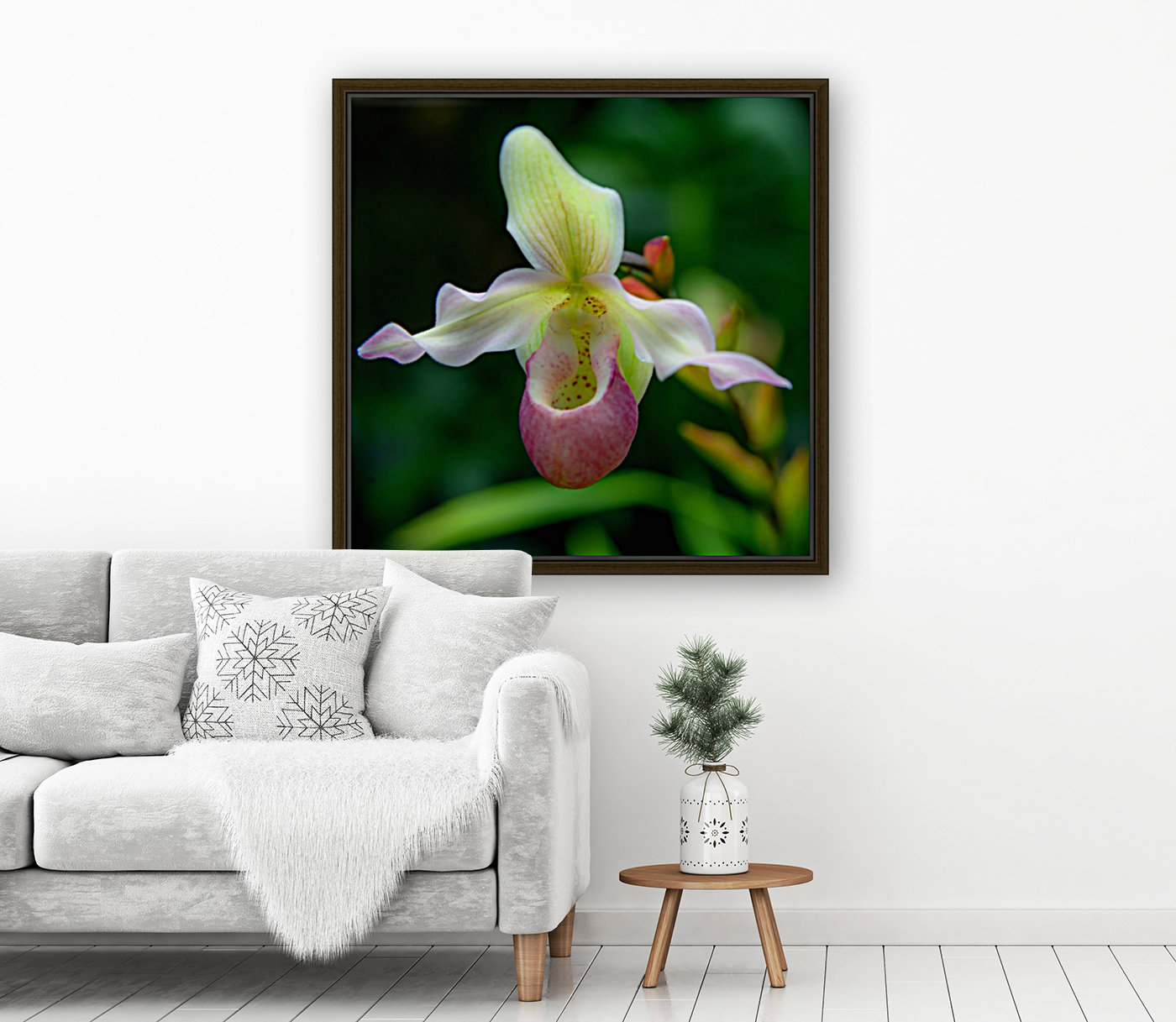 Orchidée with Floating Frame