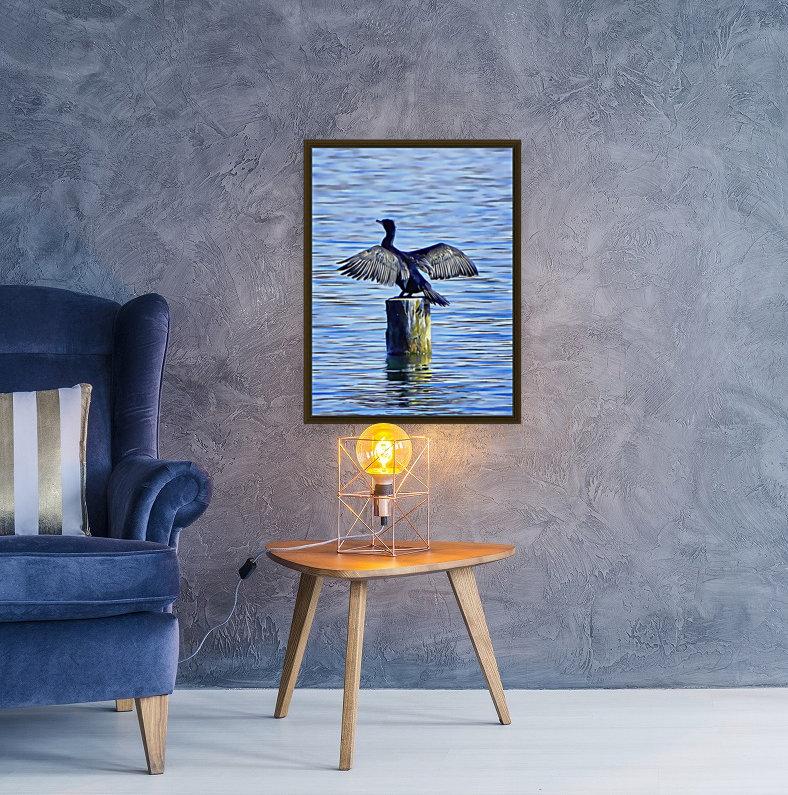 Cormorant Drying  His Wings  Art