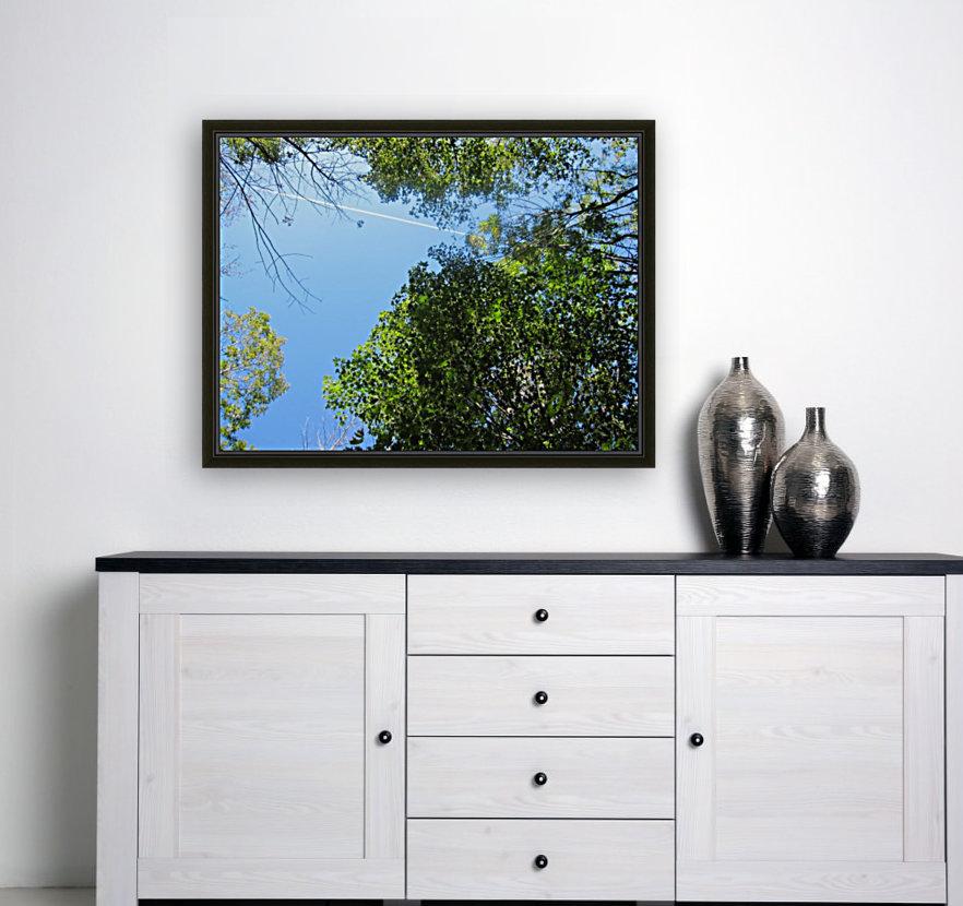Landscape (200)  Art