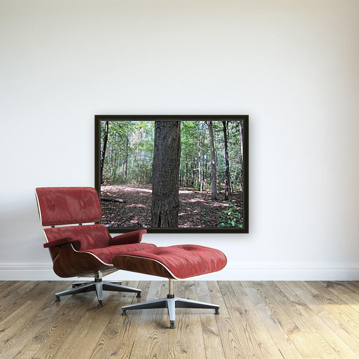 Landscape (166)  Art