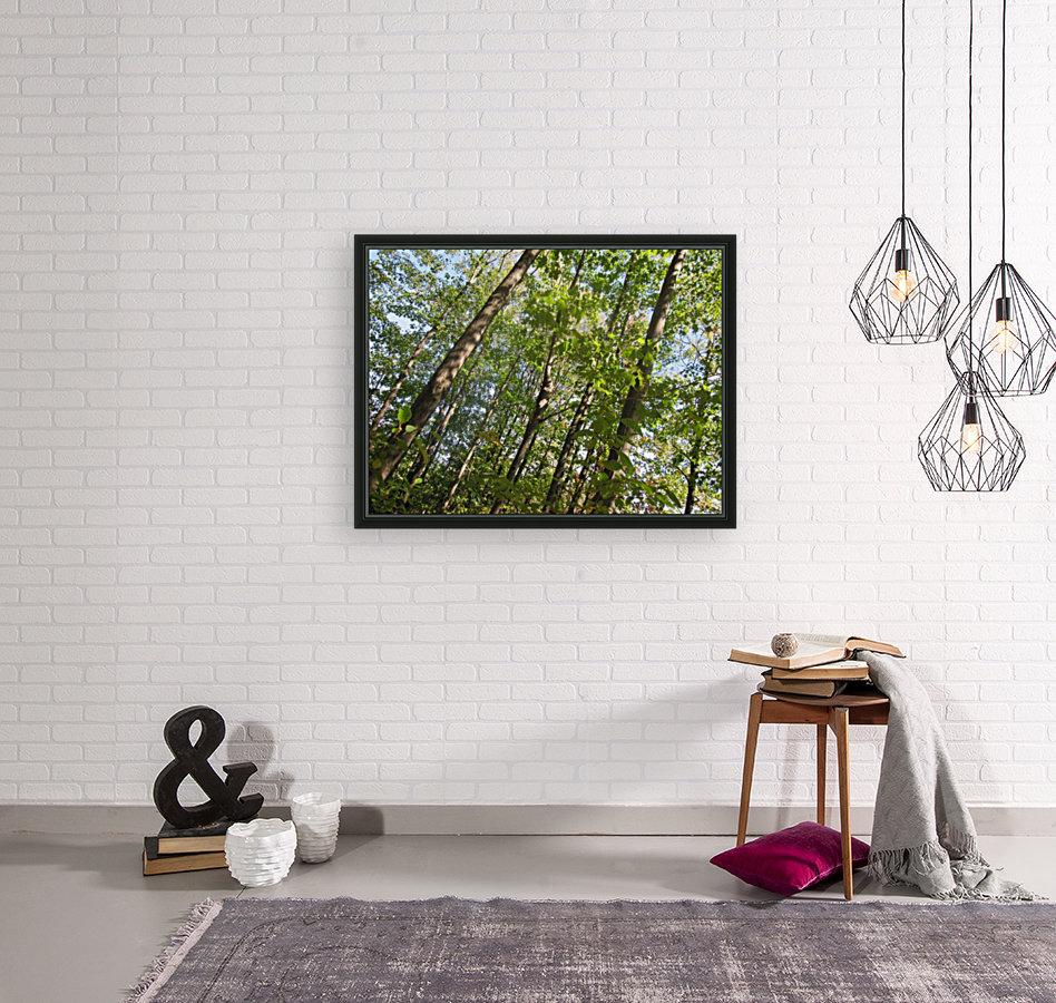 Landscape (108)  Art