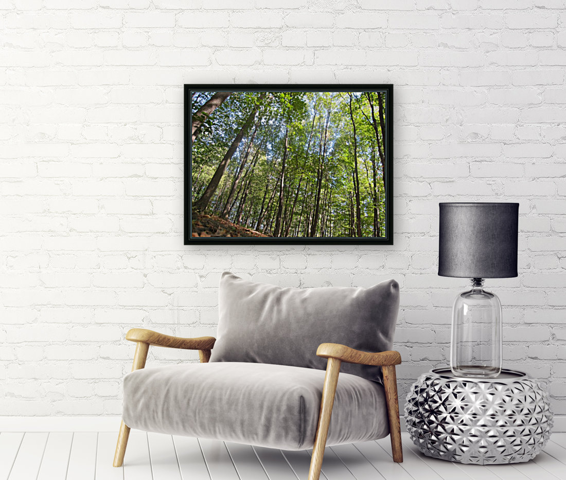 Landscape (249) with Floating Frame
