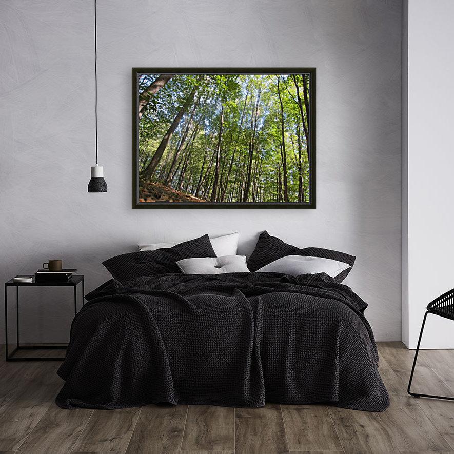 Landscape (249)  Art