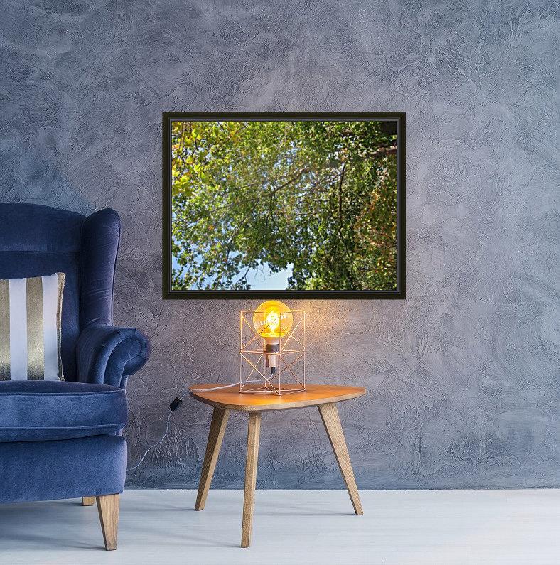 Landscape (302)  Art