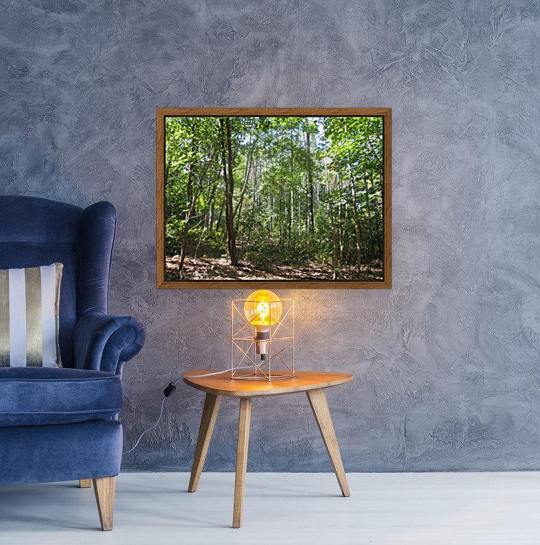 Landscape (176)  Art