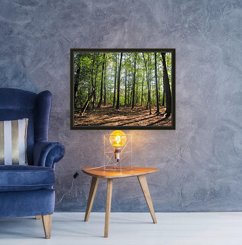 Landscape (37)  Art