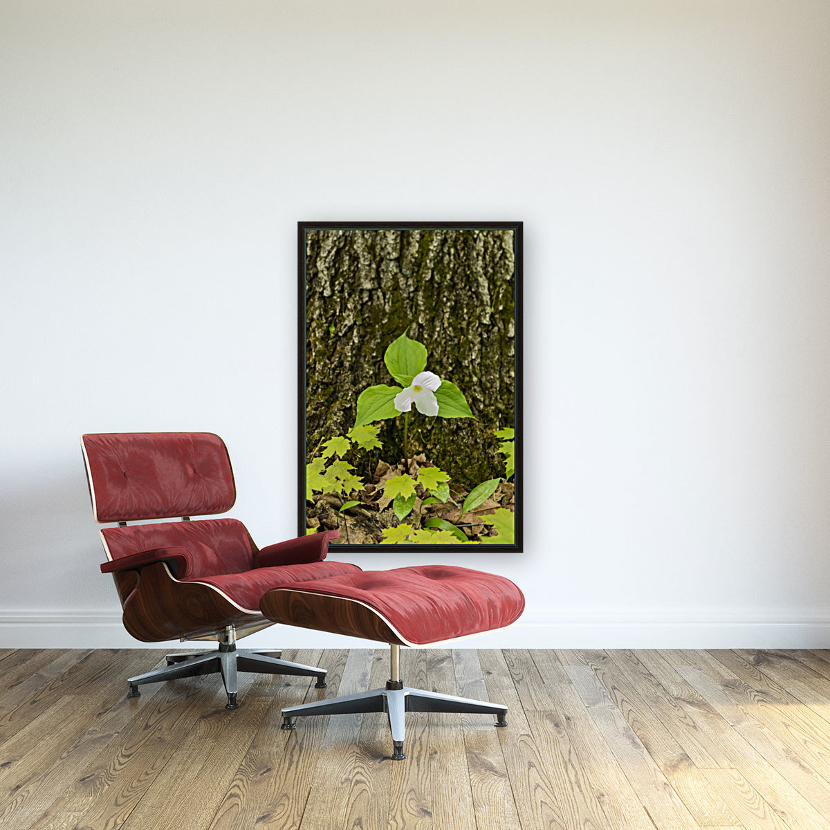 Trillium Woods 12 with Floating Frame