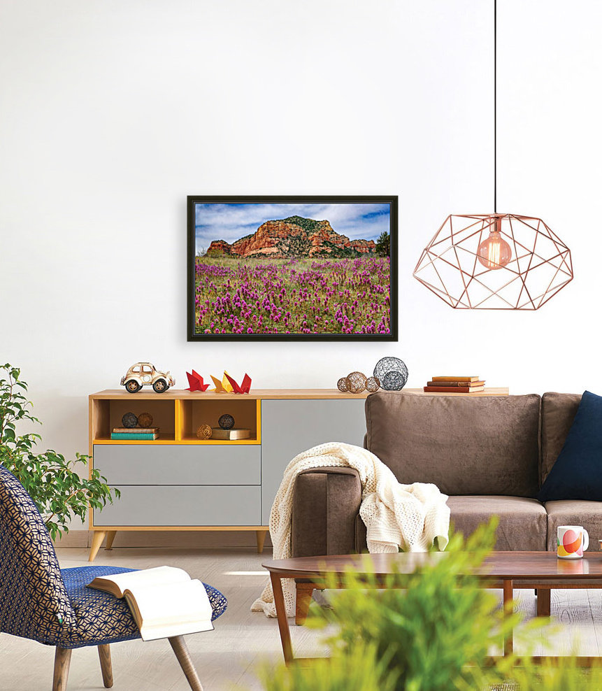 Clover Fields in Sedona with Floating Frame