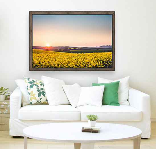 Beautiful sunset over the yellow rapeseed field.  Art