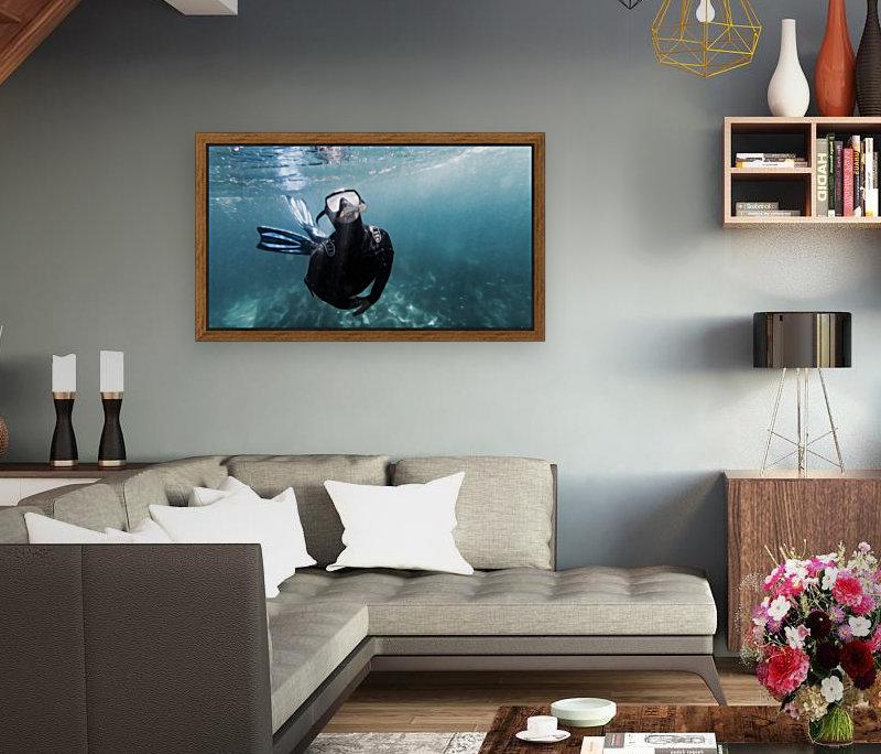 freediver  Art