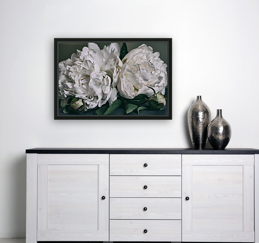Two Peonies  Art