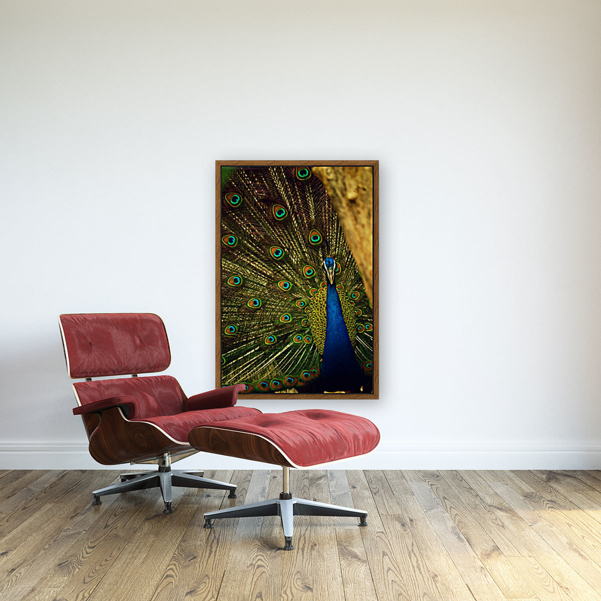 blue and green peafowl  Art