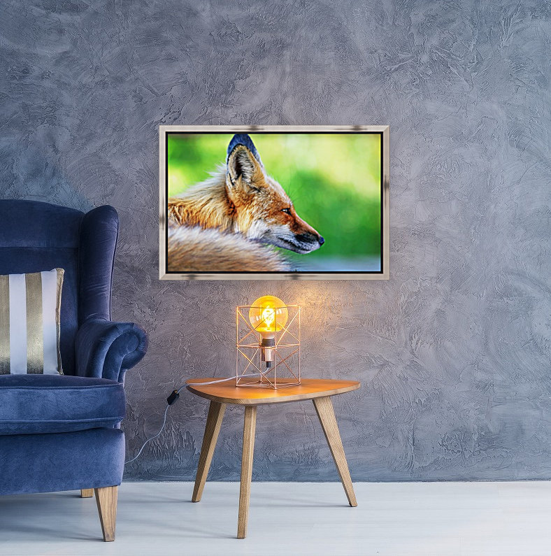 Red Fox Profile I with Floating Frame