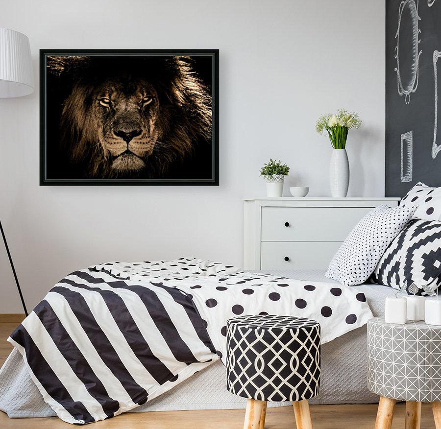 african lion wildcat mane closeup  Art