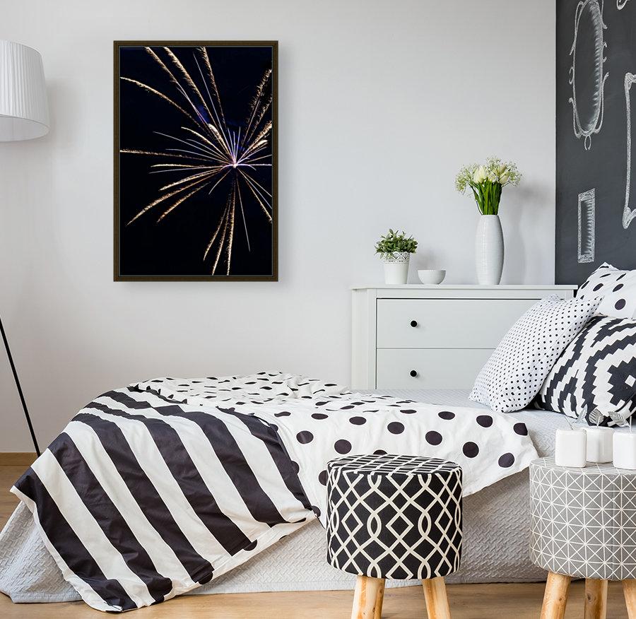 Fireworks 2019 24  Art