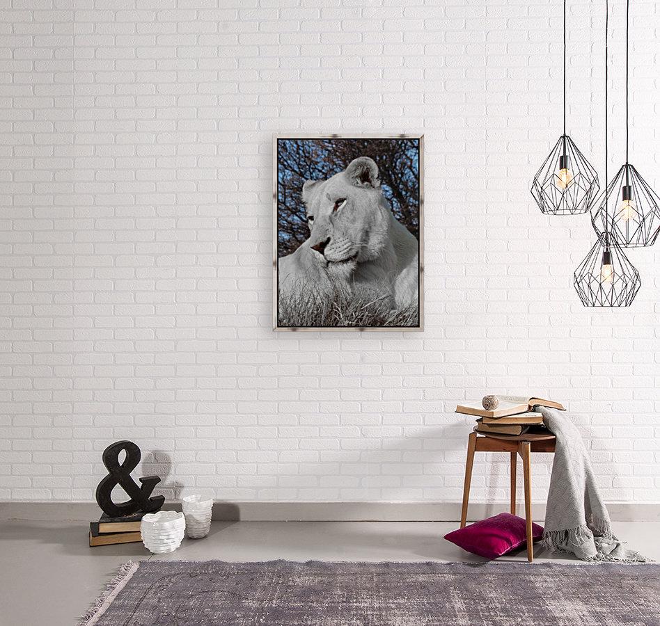 White Lion Female 1030593  Art