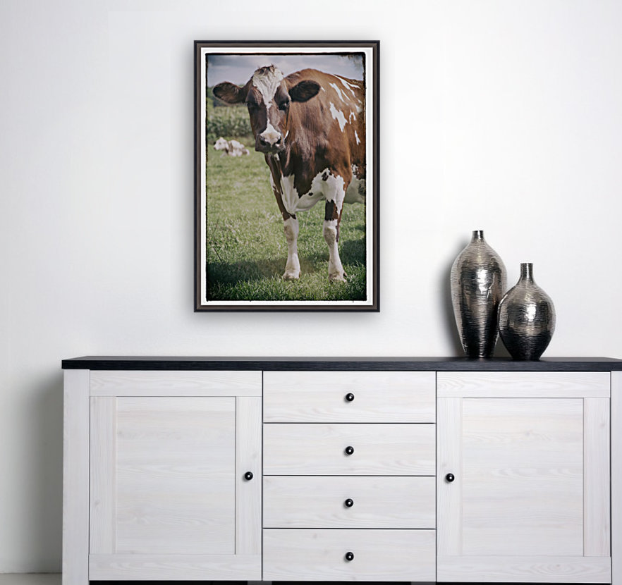 Brown Cow  Art