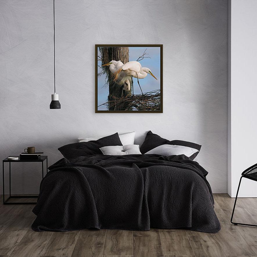 Mating Season - Great Egrets I  Art