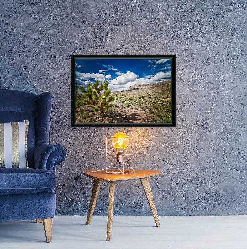 Arizona Desert   Art