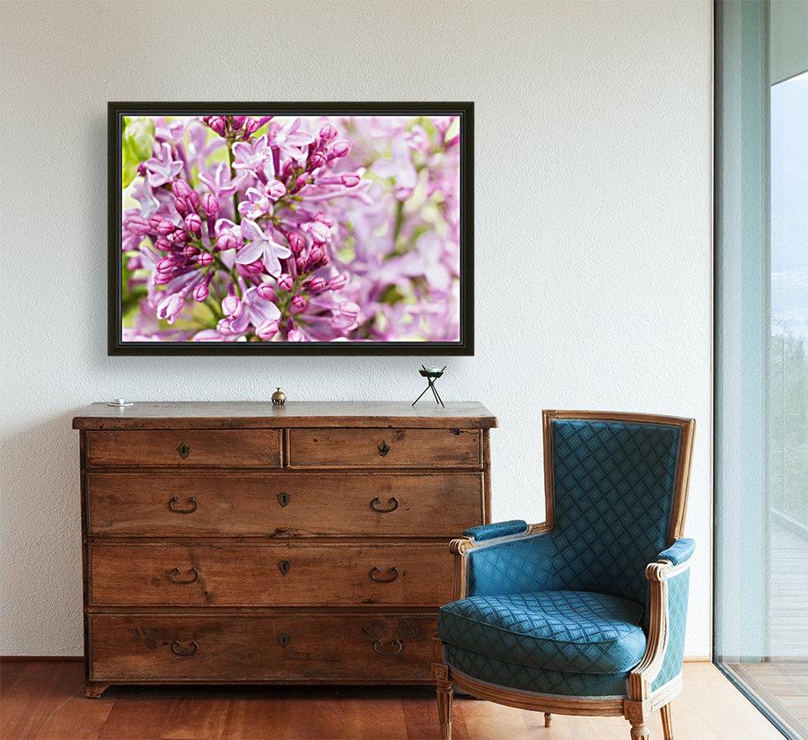 Lilacs  Art