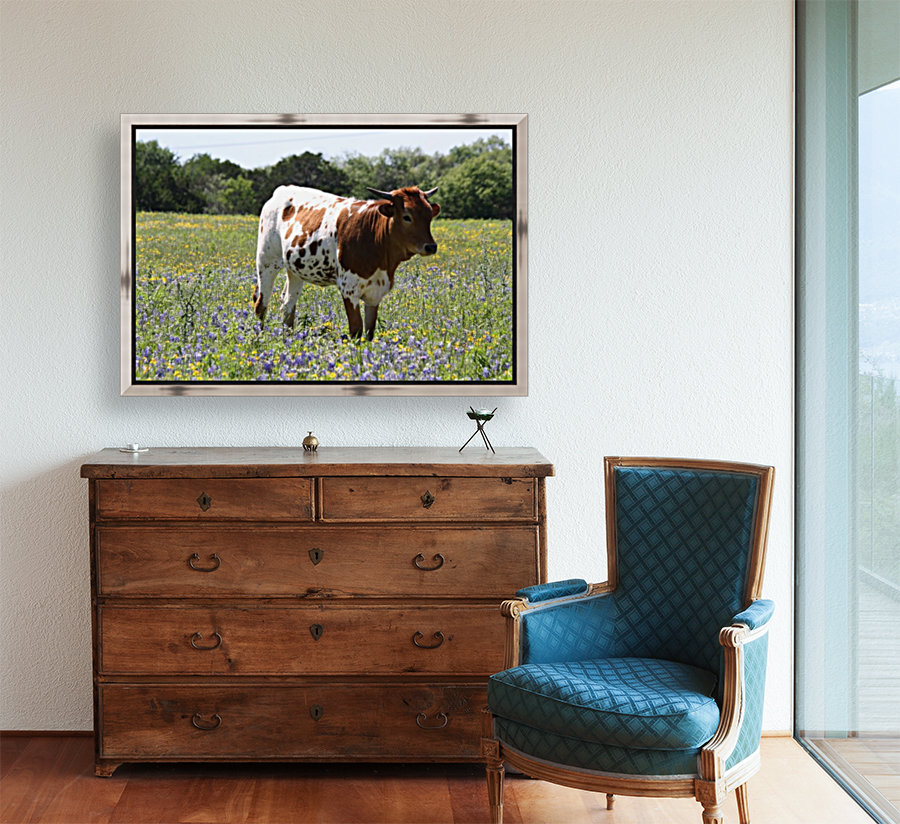 Longhorn and Bluebonnets with Floating Frame
