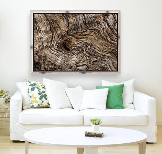 Banff Petrified Wood  Art