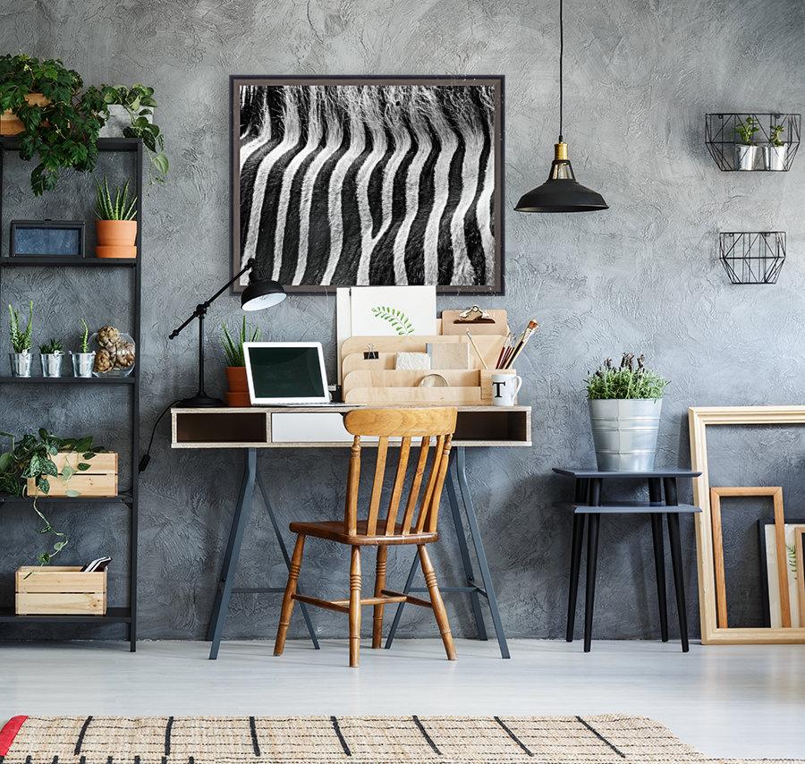 Zebra Details  Art