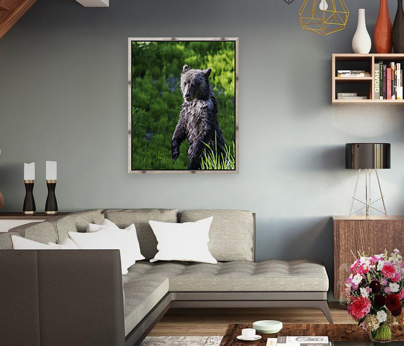 A grizzly cub named Pepper  Art