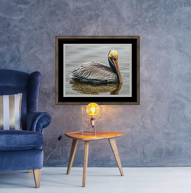 Brown Pelican II - HDR  Art