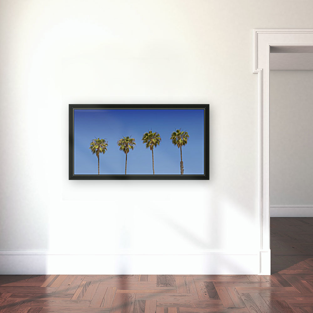 Lovely Palm Trees | Panorama  Art