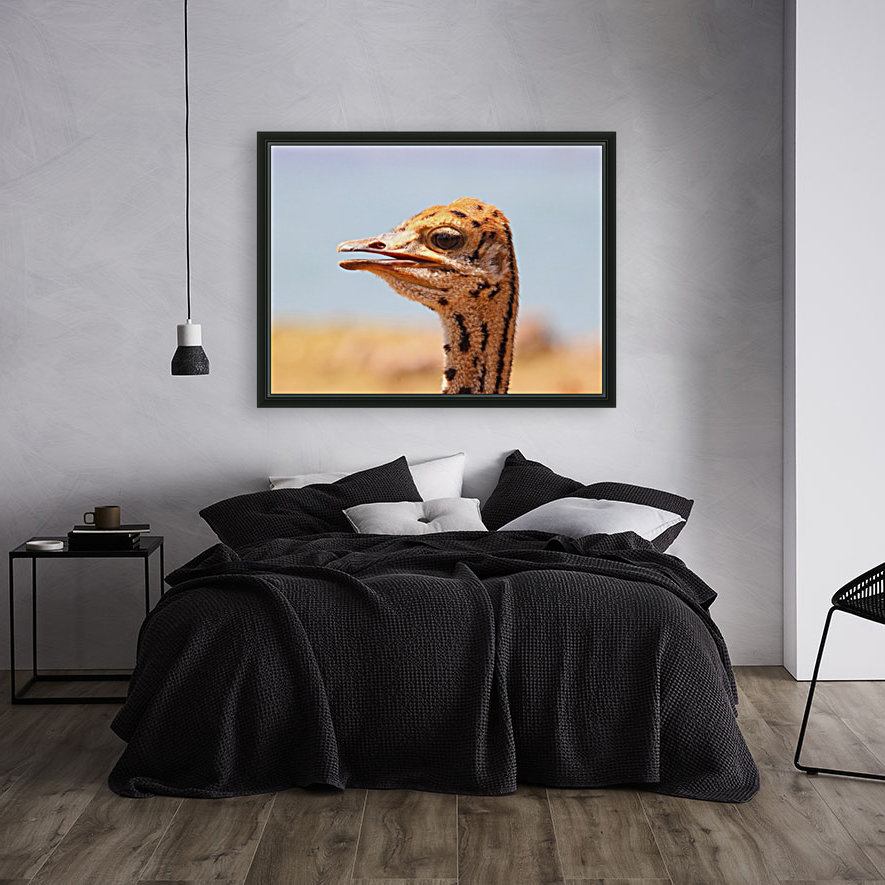 Baby Ostrich 5378 with Floating Frame