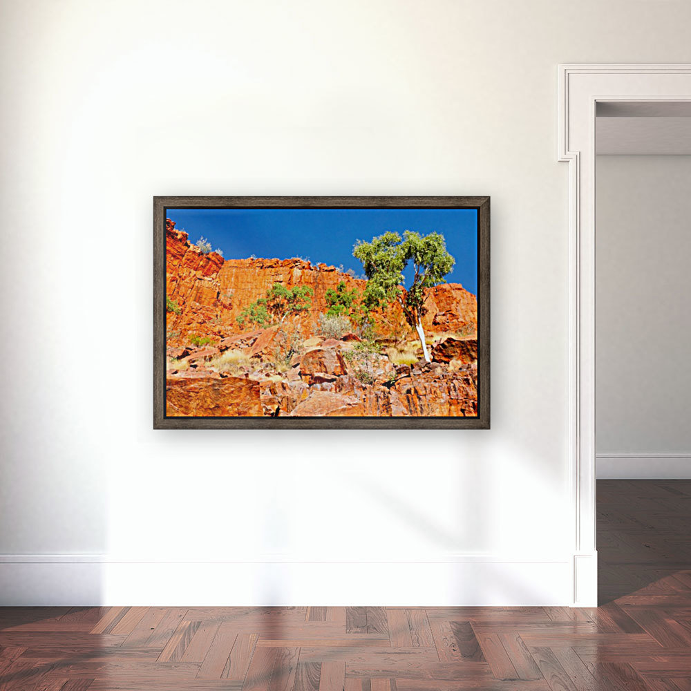Ormiston Gorge Landscape  Art