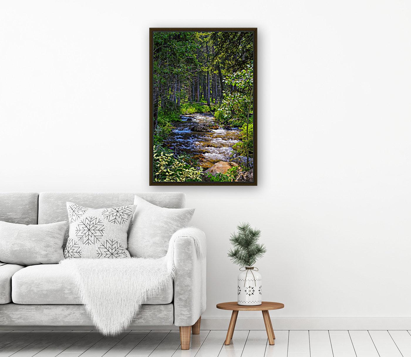 Fairy Creek  Art
