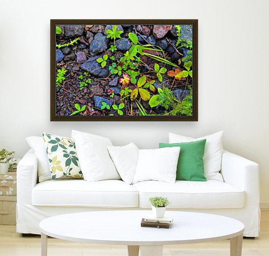 Forest floor  Art