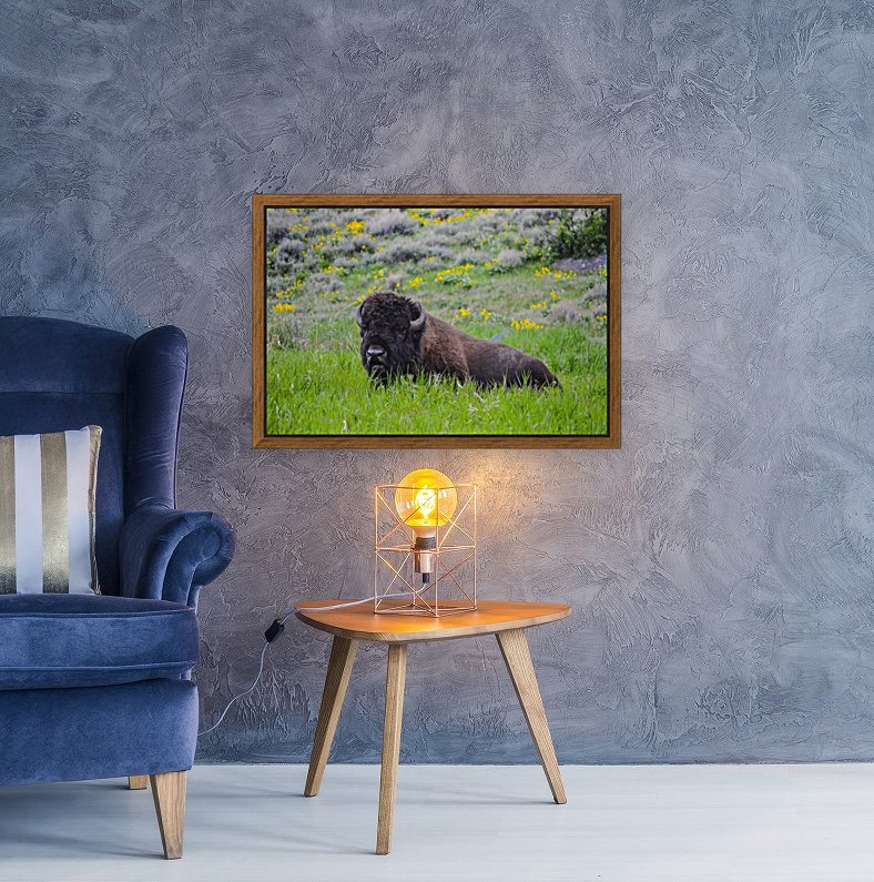 Bison in Wildflowers  Art
