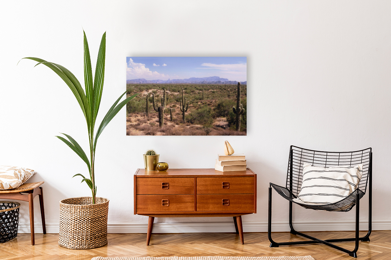 Sonora Desert Landscape Arizona Photograph  Art