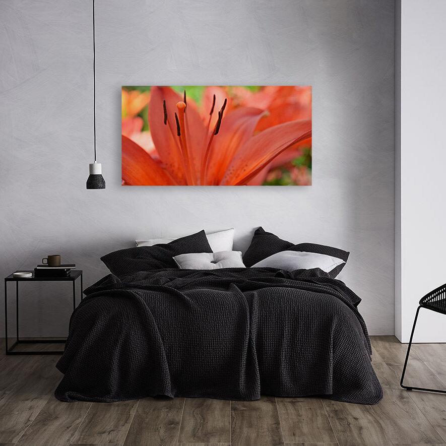 Beautiful In Orange Photography  Art