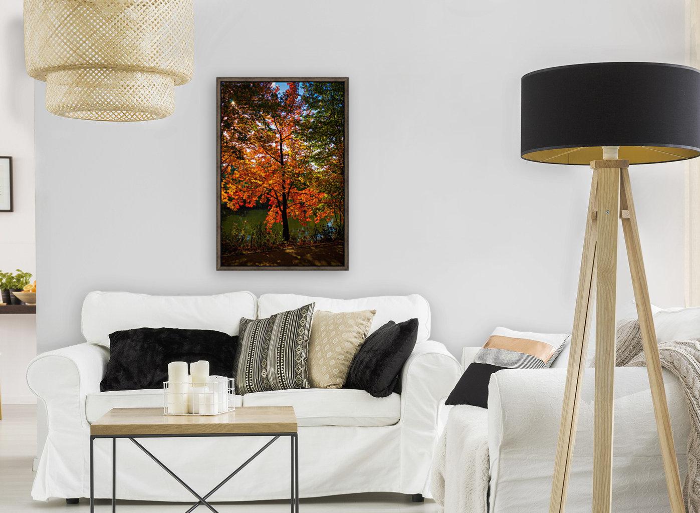 A fall colors tree  Art
