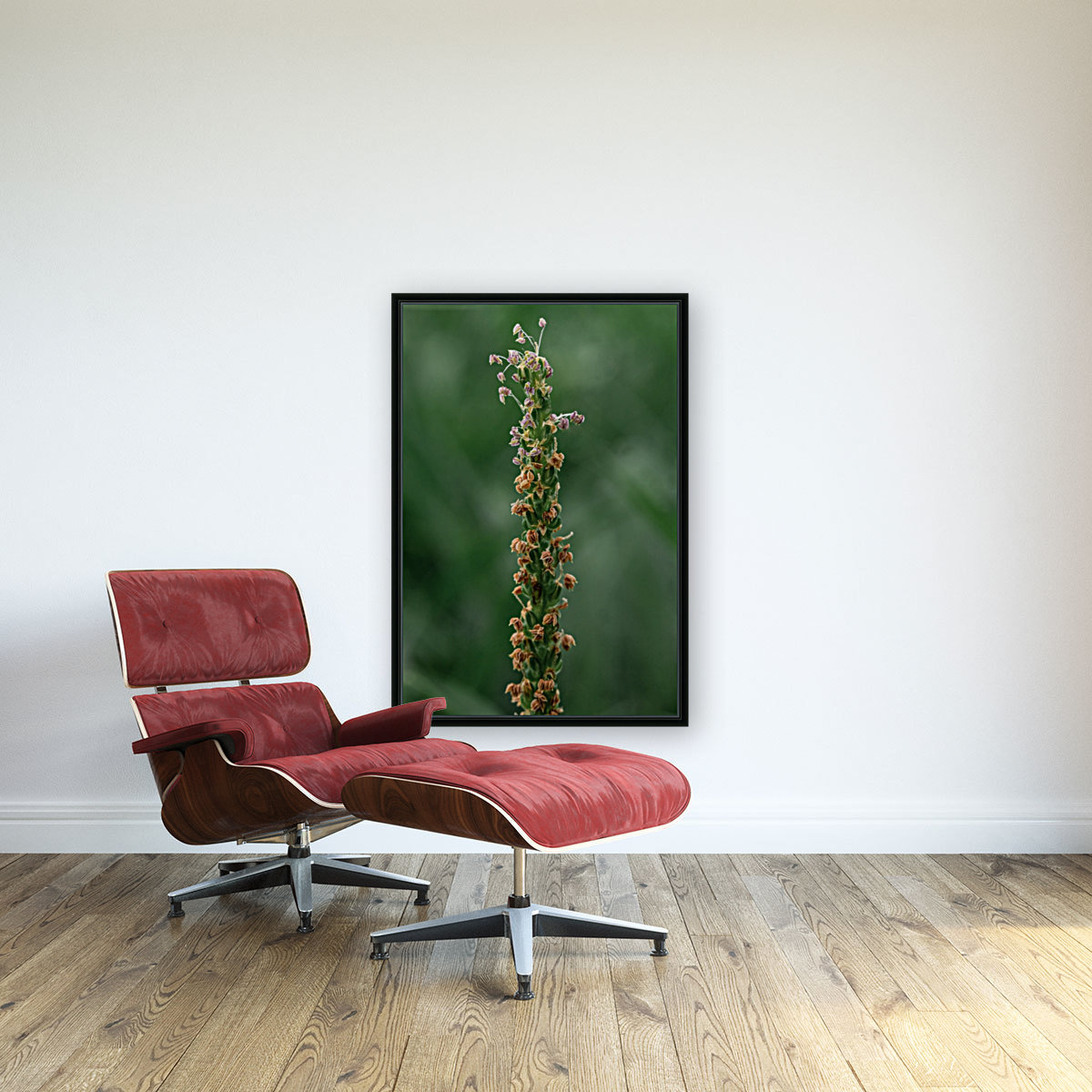 Grass with Floating Frame