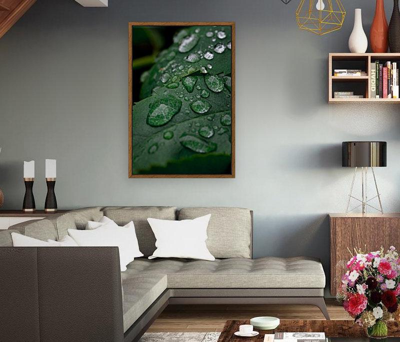 After rain  Art