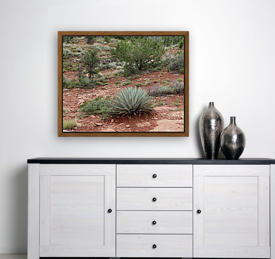 Sedona Cactus with Floating Frame