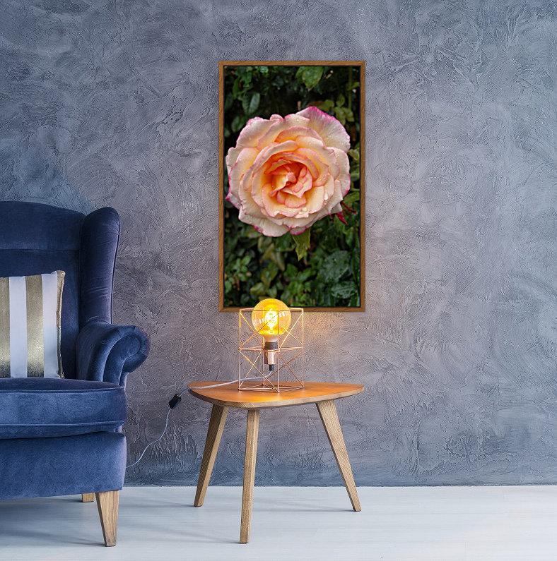 Peach Rose  Art