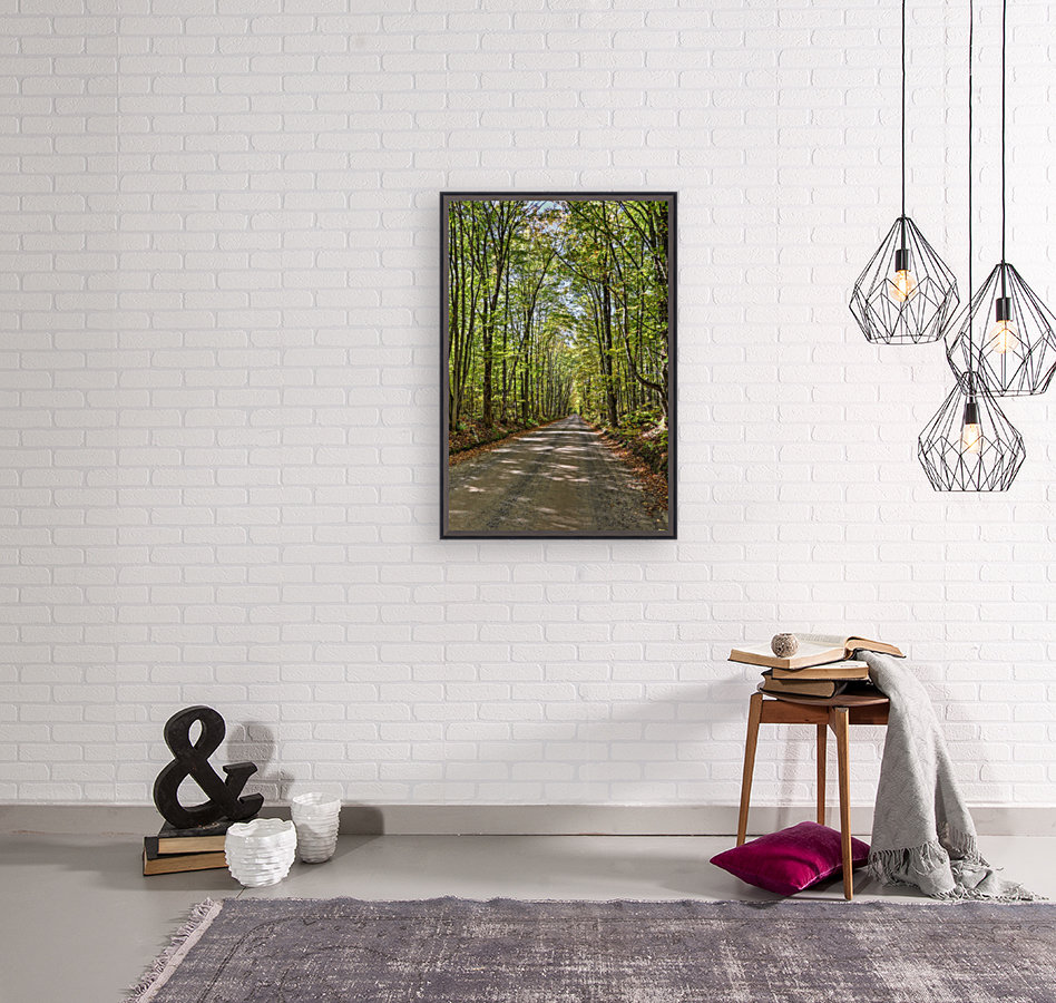 Road Less Traveled with Floating Frame